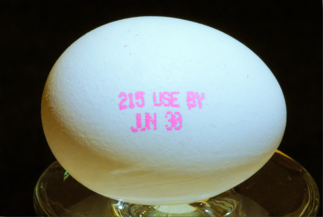 Egg with expiration date