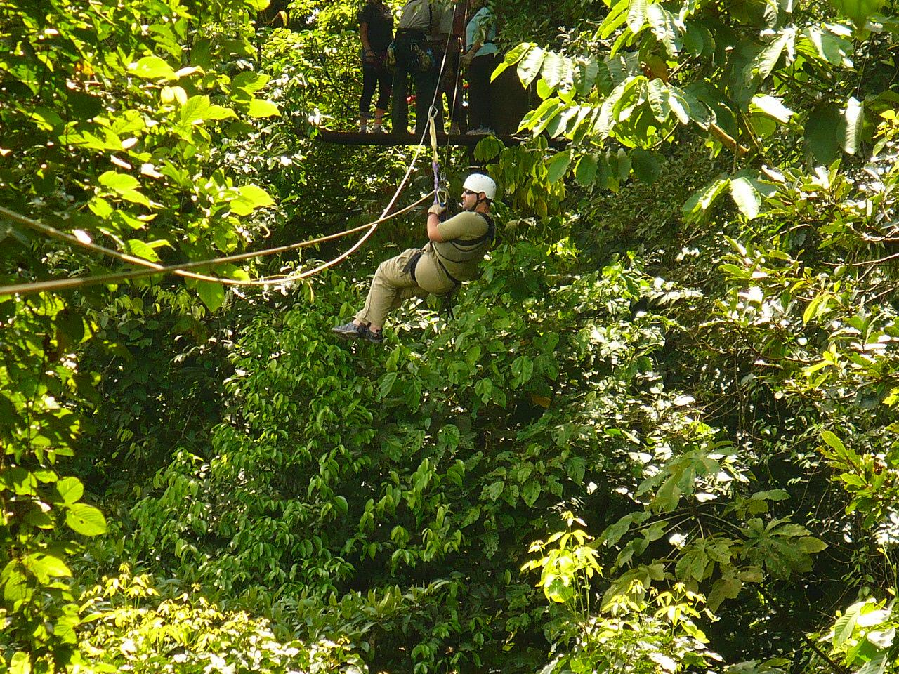 Tree Ziplining
